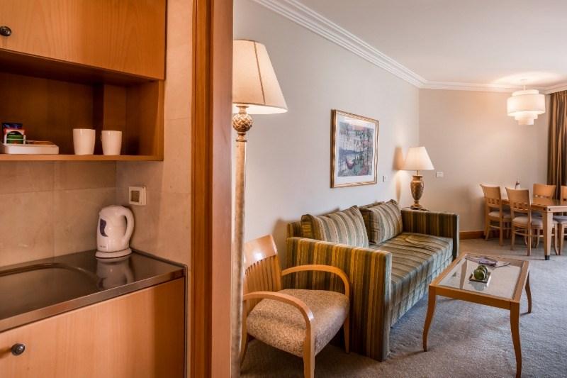 aria-dlx-suite-living-room-3-